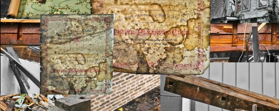 """early wall paper, mummified rat, and """"pleasure club"""" invite found resting on william schmidt's post-fire cottage sill plates"""