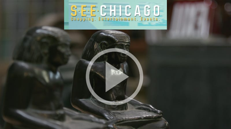 """see chicago"" explores urban remains warehouse"